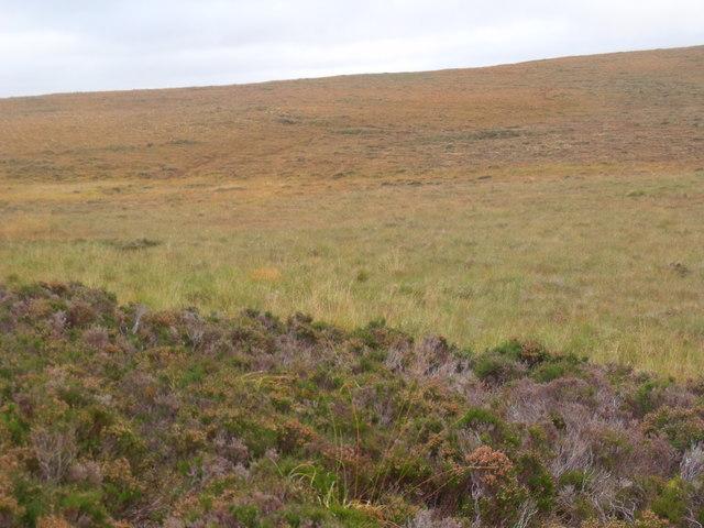 Grassland as flat as a water surface south of Cnoc an Alaskie near Crask Inn, Sutherland