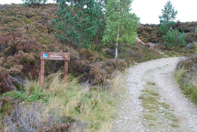 Entering Abernethy  Nature Reserve