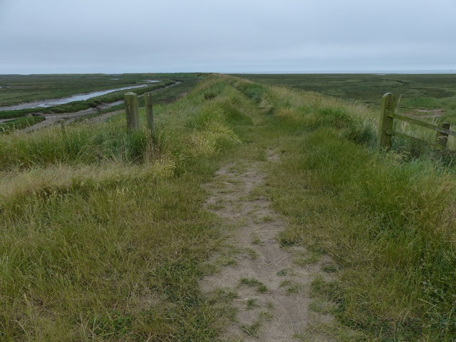 Sea bank at Freiston Shore Nature Reserve
