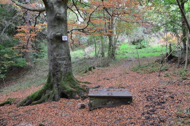 Chapman's Well, Innerleithen
