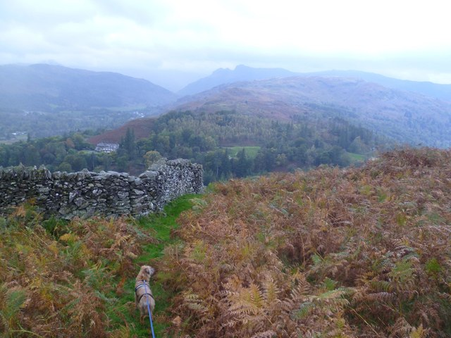 Descending Loughrigg