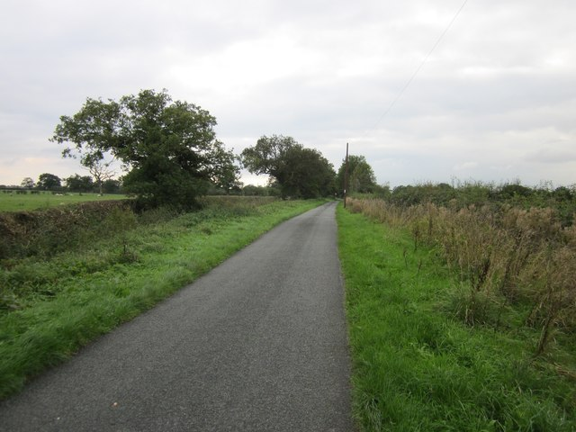 Francis Lane, Holt