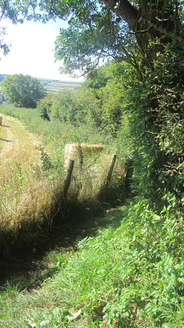 Footpath going down to Wroxall Cemetery