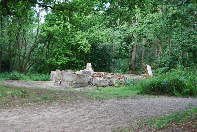 Ruin in Brede High Wood