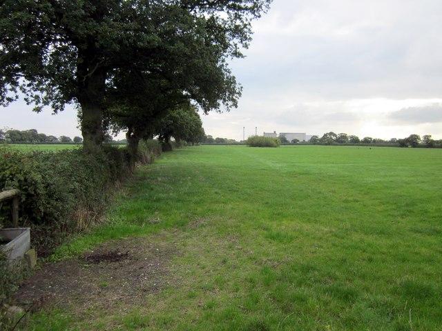 Footpath to Ridley Wood Lane