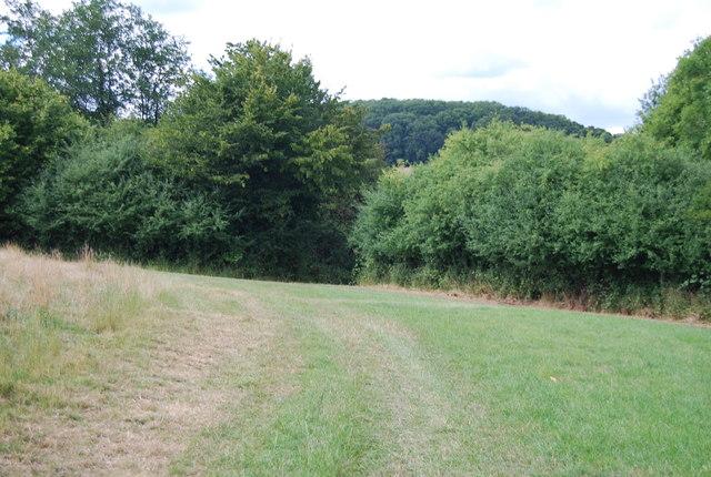 Footpath near Brede High Wood