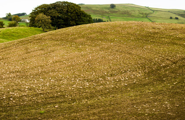 Below Crawston Hill