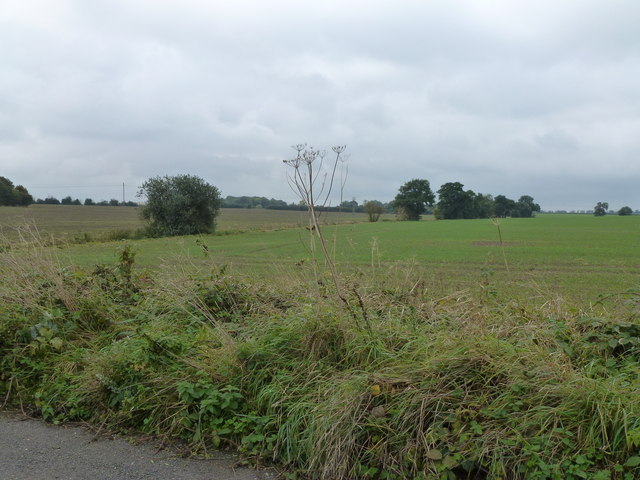 Farmland on Old Ramsey Road