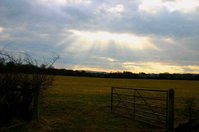 Evening at Highfield Farm