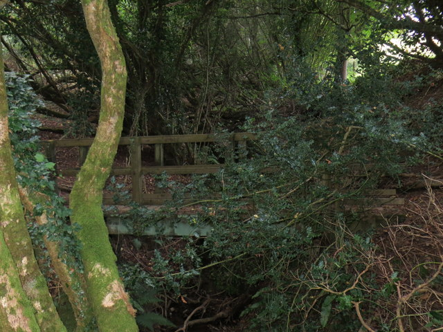 Hidden footbridge over stream
