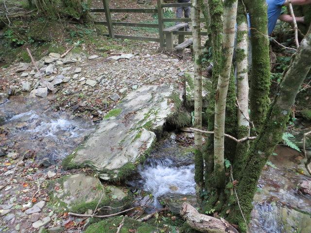 Stone slab footbridge over stream