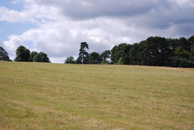 Near Sedlescombe