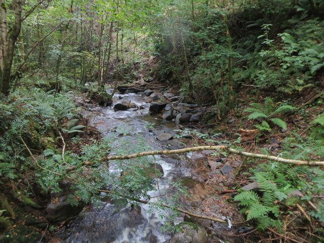 The infant River Heddon