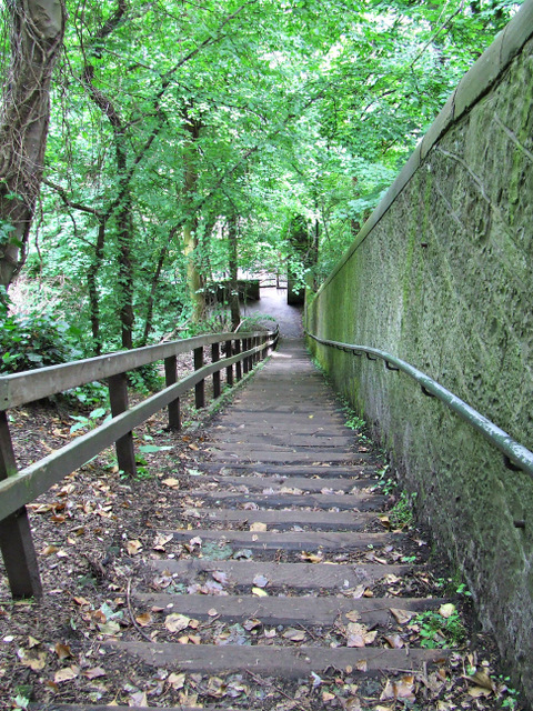 Steps to the Water of Leith