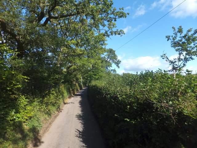 Road from Elworthy to Colleton Cross