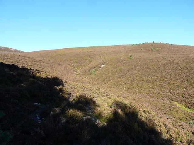 Heathery valley below Meikle Elrick