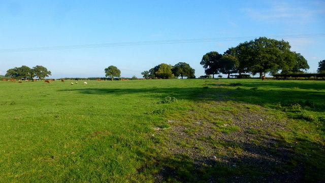 Worcestershire pasture land