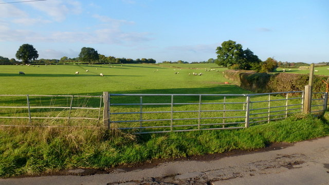 Pastoral scene, North Worcestershire