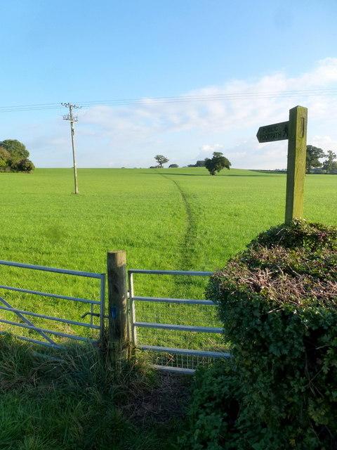 Footpath to Bromsgrove