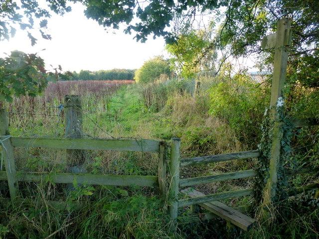 Footpath from Snuff Hill