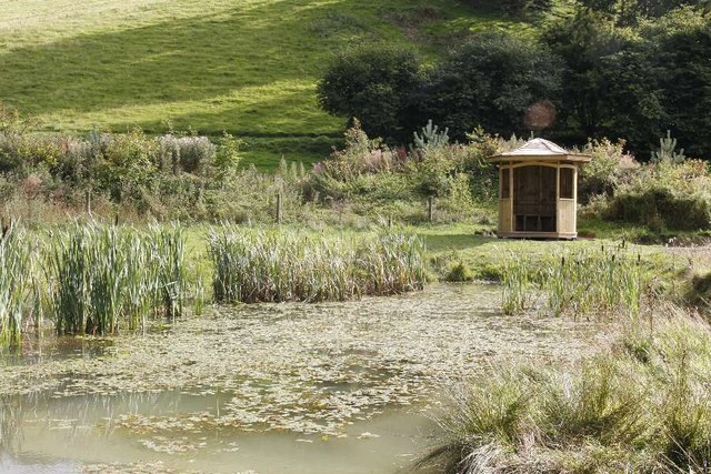 Shelter by the Pond