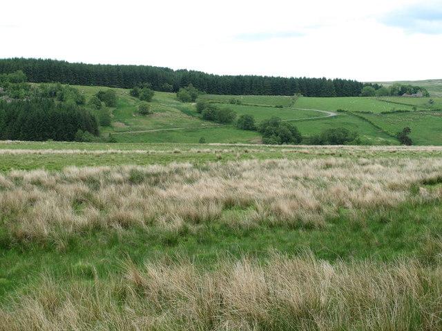 Moorland west of Watty's Scar