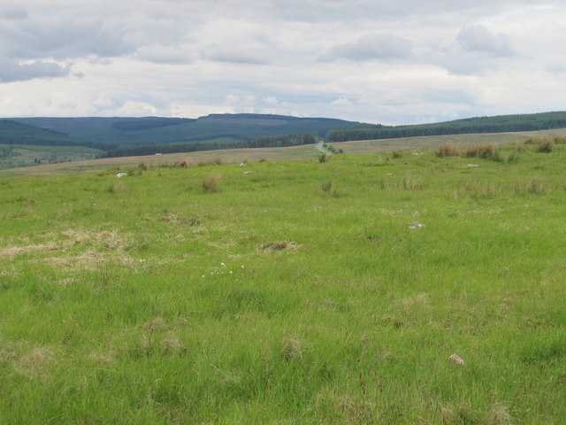 Moorland above and east of Bellshiel