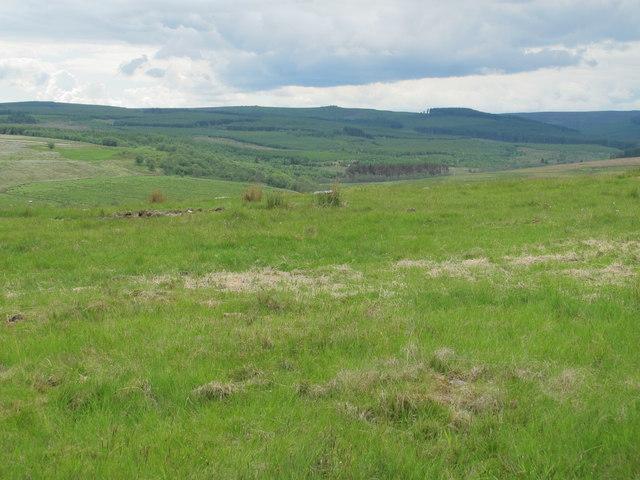 Moorland above Bellshiel Crag
