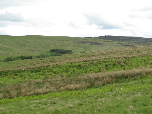 The valley of Bellshiel Burn