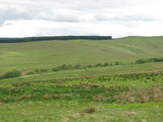 The valley of Bellshiel Burn south of Dour Hill