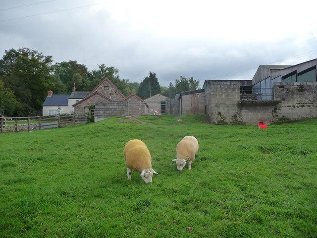 Wenllan farm near Llangattock