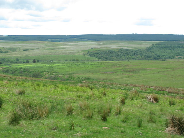 The valley of Bellshiel Burn north of the River Rede