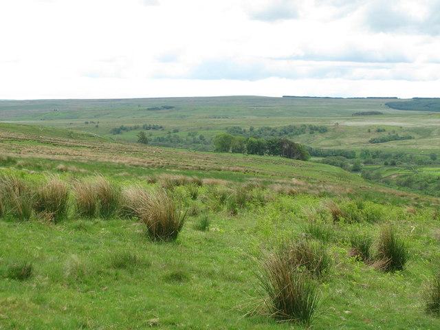 Moorland north of Bellshiel