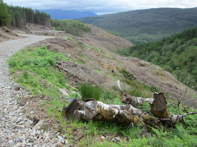 Forestry track above the Gleann Cia-aig valley