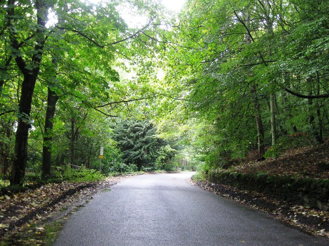 Road, Duntrune Hill