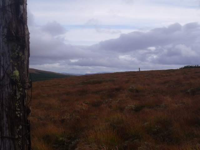 Dismantled forest fence on Cnoc an Doire near Crask Inn, Sutherland