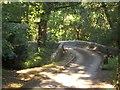 SX3565 : Clapper Bridge by Derek Harper