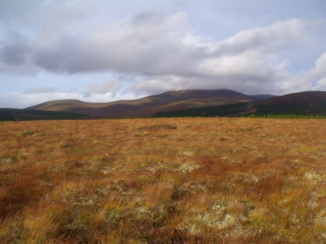 Looking north-east on Cnoc na Doire near Crask Inn, Sutherland