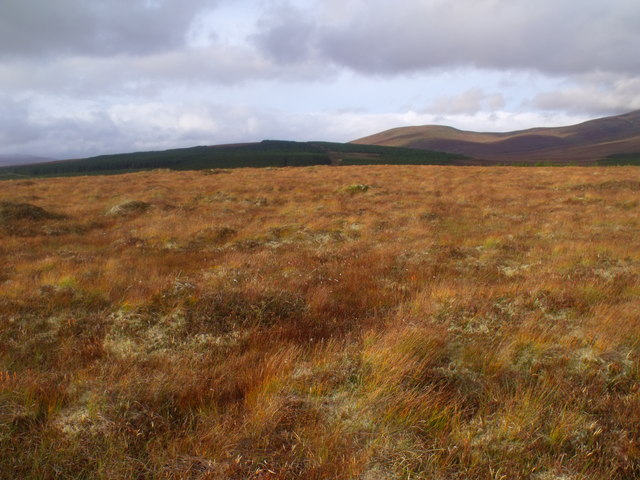 Summit area of Cnoc na Doire near Crask Inn, Sutherland