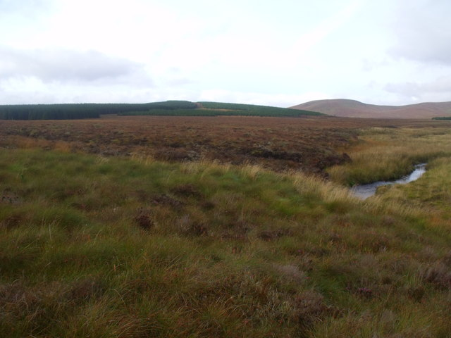 Peat blanket on the west bank of Feith a' Chuill near Crask Inn, Sutherland