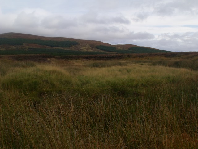 Grassland surrounded by blanket peat on Feith a' Chuill near Crask Inn, Sutherland