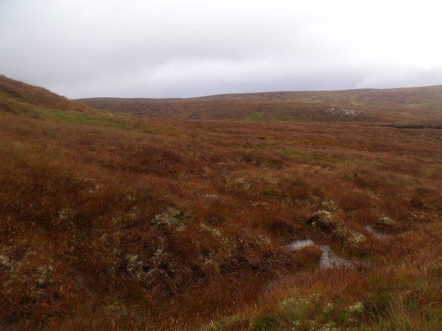 Ground east of Meall Meadhonach near Crask Inn, Sutherland