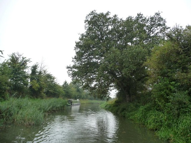 Narrowboat moored in a gap in the rushes
