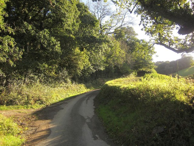 Lane to Leigh Farm