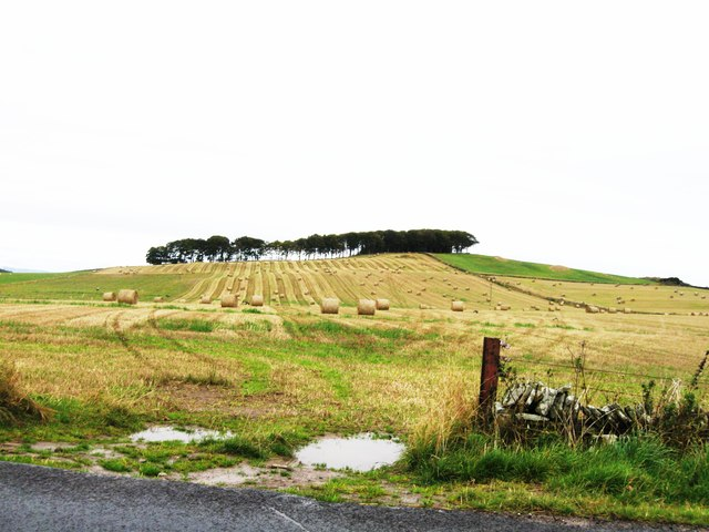 Fields to the east of A928