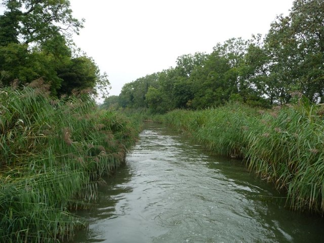 Wide canal narrowed by rushes