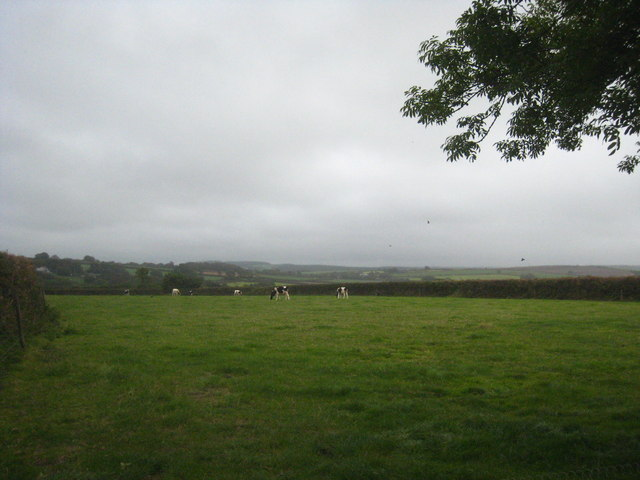 Field at Lower Town Woolfardisworthy