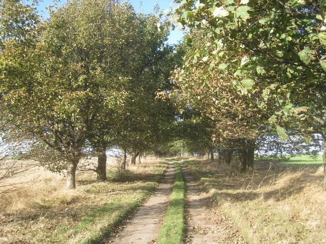 The lower end of Brackenholmes Lane