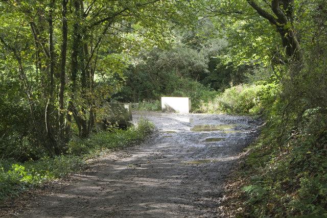 Wooded lane and bridge