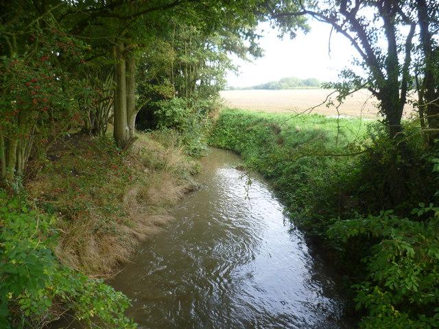 Hammer Stream near Brissenden Farm